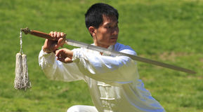 World Tai Chi-Qigong Day in Central Park Royalty Free Stock Photo