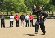 World Tai Chi-Qigong Day in Central Park. This was shot in the Central Park of New York City on April 24, 2010, which is the 11th annual World Tai Chi-Qigong Day Stock Image