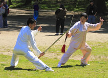 World Tai Chi-Qigong Day in Central Park stock image