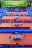 World Team Table Tennis Royalty Free Stock Photo