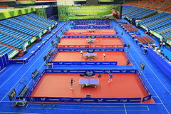 World Team Table Tennis Royalty Free Stock Image