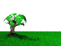 World tree Royalty Free Stock Photos