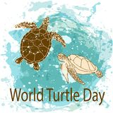 World Turtle Day concept. World Turtle Day 23 May background. Vector illustration Stock Image