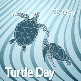 World Turtle Day concept. World Turtle Day 23 May background. Vector illustration Stock Photos