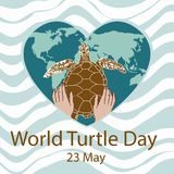 World Turtle Day concept. World Turtle Day 23 May background. Hands of a man holding a turtle. Vector illustration Stock Photography