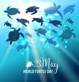World Turtle Day 23 May background. Turtle swims in the ocean against the background of the sun. Vector illustration. World Turtle Day 23 May background. Turtle Royalty Free Stock Photography