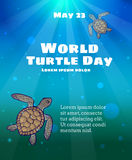 World Turtle Day, May 23 Royalty Free Stock Photo