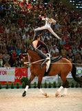World vaulting championship Royalty Free Stock Image