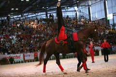World vaulting championship Stock Images