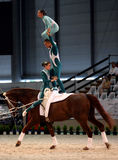 World vaulting championship Royalty Free Stock Photos