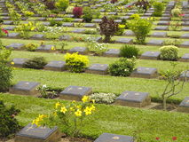 World War 2 Cemetary. For Allied prisoners of war in Kanchanaburi, Thailand Stock Photography