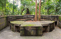 World War II Battery in the jungle in Singapore Royalty Free Stock Photography