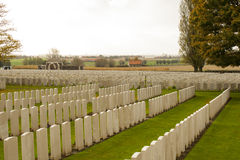 World war one cemetery tyne cot in belgium flanders ypres Royalty Free Stock Images