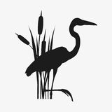 World Wetlands Day Royalty Free Stock Photography