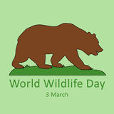 World wildlife day. Grizzly bear standing or walking. Flat  stock illustration Stock Photography