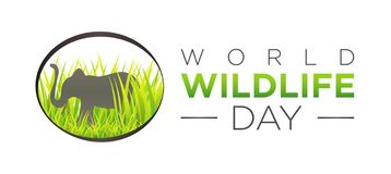 World Wildlife Day Isolated Icon with Elephant Illustration. On White Background stock illustration