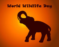 World wildlife day text with elefant silhouette on sunset background . Vector illustration for poster, banner, card Stock Photos