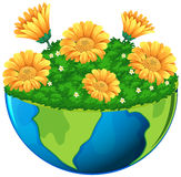 World with yellow flowers in garden Stock Images