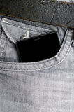 World in your pocket Royalty Free Stock Photo