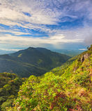 World's End. Horton Plains Royalty Free Stock Photography