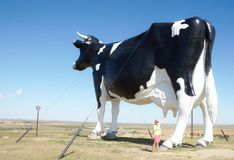 World largest cow from north dakota Royalty Free Stock Photo