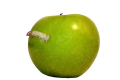 Worm. An ugly worm pops out of an apple Stock Photo