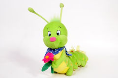 WORM. Doll and flower on white royalty free stock images