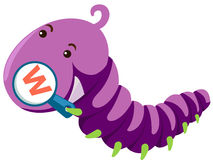 Worm. Illustration of isolated animal alphabet W with worm Stock Image