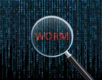 worm Photo libre de droits