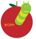 worm Fotografia Stock