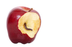 Worm in apple. Worm is coming out of bitten apple Royalty Free Stock Photography