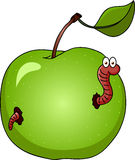 Worm and apple Stock Photo