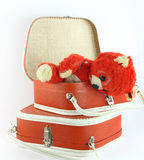 Worm bear and small suitcases Royalty Free Stock Photos