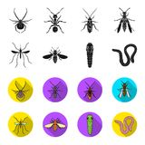 Worm, centipede, wasp, bee, hornet .Insects set collection icons in black,flet style vector symbol stock illustration.  Stock Photography