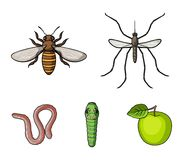 Worm, centipede, wasp, bee, hornet .Insects set collection icons in cartoon style vector symbol stock illustration web. Worm, centipede, wasp, bee, hornet Stock Image