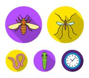 Worm, centipede, wasp, bee, hornet .Insects set collection icons in flat style vector symbol stock illustration web. Worm, centipede, wasp, bee, hornet .Insects Royalty Free Stock Photo