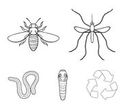 Worm, centipede, wasp, bee, hornet .Insects set collection icons in outline style vector symbol stock illustration web. Worm, centipede, wasp, bee, hornet Stock Image