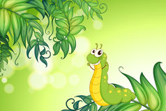 A worm crawling at the leaves. Illustration of a worm crawling at the leaves Royalty Free Stock Photo