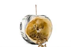 Worm eat US dollar apple Royalty Free Stock Image
