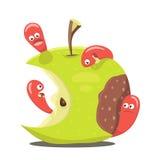 Worm eaten rotten apple Stock Photo
