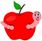 A worm eating an apple Stock Image
