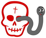 A worm emerging from a skull Stock Photography