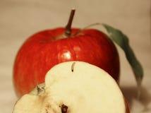 Worm op de appel Royalty-vrije Stock Afbeelding