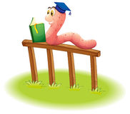A worm reading above the wooden fence Royalty Free Stock Images
