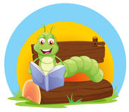 A worm reading a book Stock Image