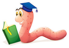 A worm reading wearing a graduation cap Stock Image