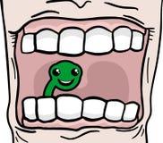 Worm tooth Stock Photos