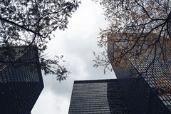 Worms Eye View of High Rise Buildings Royalty Free Stock Photography