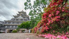 Okayama castle against dark clouds with flowers, Japan Royalty Free Stock Images