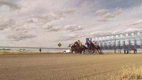 Horse racing in slow motion